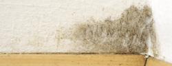 feuchter keller feuchtigkeit im haus entfeuchtung durch l ftung. Black Bedroom Furniture Sets. Home Design Ideas